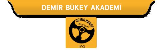 Demir Bükey Akademi
